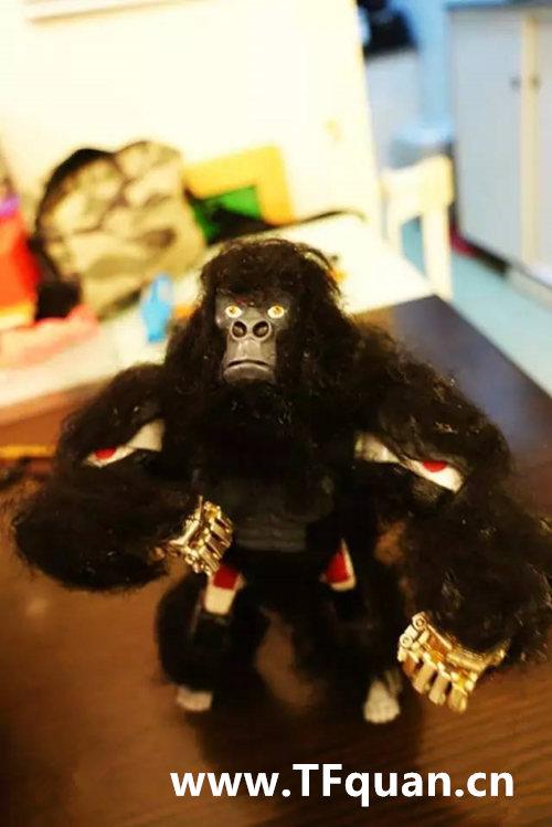 迷友DIY—带毛的猩猩队长 赏析 第4张