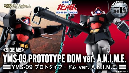 万代 ROBOT魂 〈SIDE MS〉 YMS-09 大魔原型机ver. A.N.I.M.E. 动态 第10张