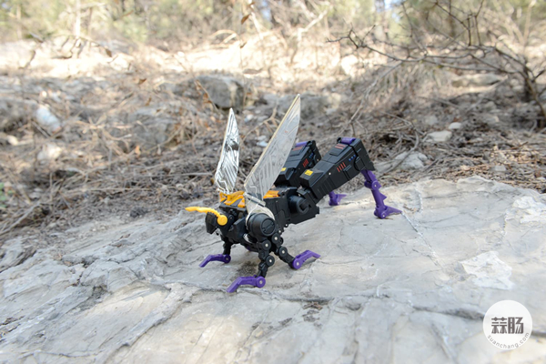 FansToys机器昆虫小队外拍分享 赏析 第12张