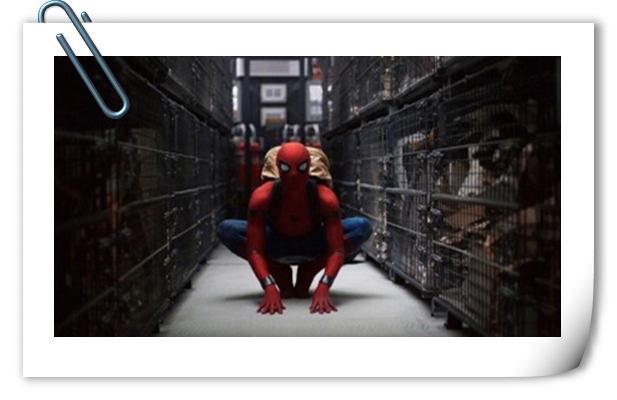 《蜘蛛侠:英雄归来》终极海报来袭 小蜘蛛秃鹰海上激战!