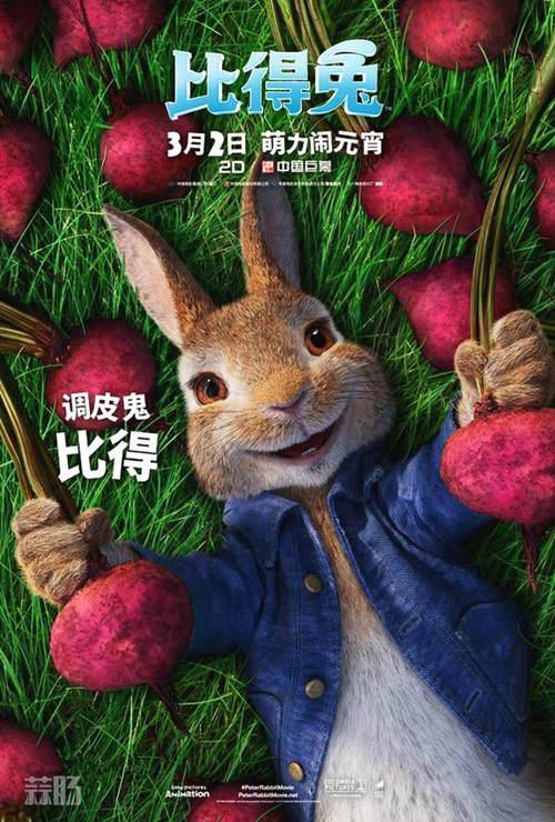 怎么可以欺负兔兔?电影《比得兔》新片段公开 3月初上映! 动漫 第2张