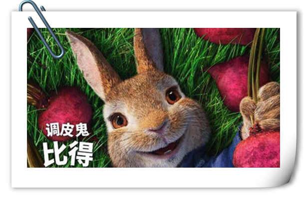 怎么可以欺负兔兔?电影《比得兔》新片段公开 3月初上映!