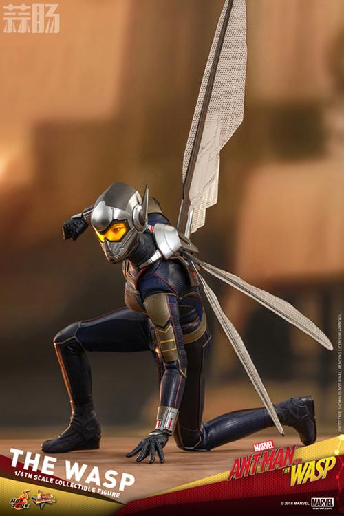 Hottoys推出《蚁人2:黄蜂女现身》蚁人及黄蜂女1:6比例珍藏人偶 模玩 第16张