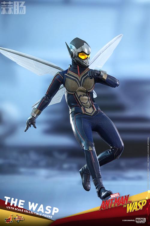 Hottoys推出《蚁人2:黄蜂女现身》蚁人及黄蜂女1:6比例珍藏人偶 模玩 第12张