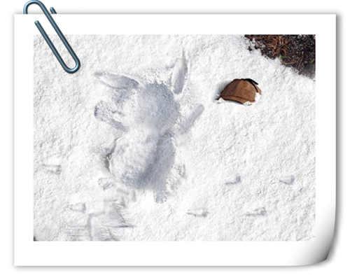 真人版《名侦探皮卡丘》全新雪地海报公开