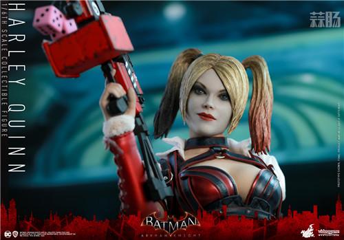 Hot Toys推出《蝙蝠侠:阿卡姆骑士》小丑女哈莉·奎茵1:6人偶 哈莉·奎茵 小丑女 DC漫画 蝙蝠侠:阿卡姆骑士 HT Hot Toys 模玩  第5张