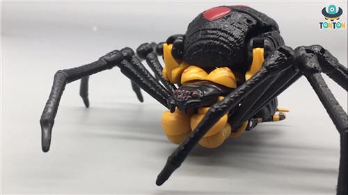 变形金刚Kingdom王国系列毒蜘蛛玩具实物图流出 野兽战争 毒蜘蛛 王国系列 Kingdom 变形金刚 变形金刚  第1张