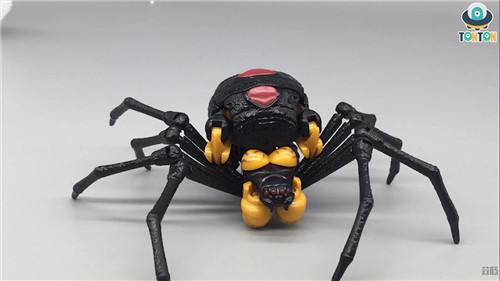 变形金刚Kingdom王国系列毒蜘蛛玩具实物图流出 野兽战争 毒蜘蛛 王国系列 Kingdom 变形金刚 变形金刚  第3张